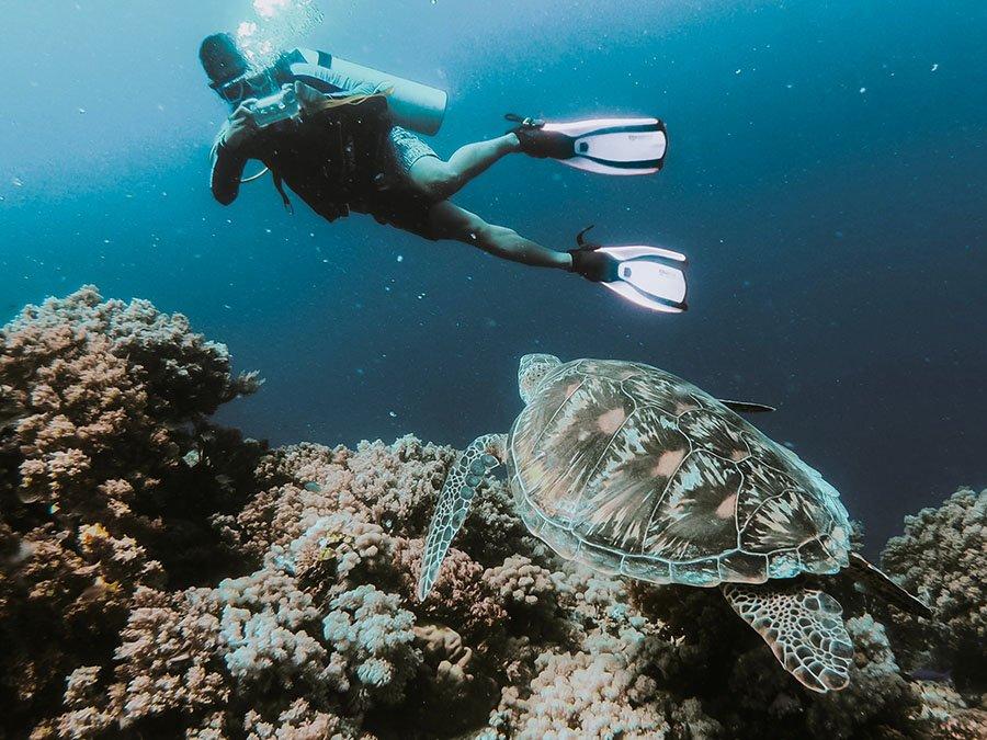 Scuba Diving Guide 1