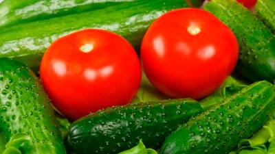 диета на салате из огурцов и помидоров