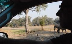 Vakantie_Zambia_100719_0087-8