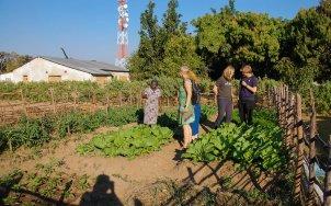 Vakantie_Zambia_210719_0642-155