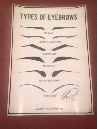 Types Of Eyebrows Poster