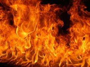 宇都宮城址公園祭りで爆発音、火災•火事の原因は餃子祭り、ジャパンカップを狙った連続爆弾で同時多発テロ?犯人は特定?