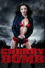 Cherry Bomb (2011) BluRay 480p & 720p Full Movie Download