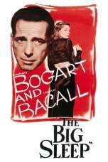The Big Sleep (1946) BluRay 480p & 720p Free HD Movie Download