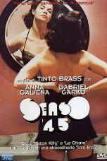 P.O. Box Tinto Brass (1995) BluRay 480p | 720p | 1080p Movie Download