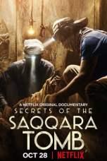 Secrets of the Saqqara Tomb (2020) WEBRip 480p   720p   1080p Movie Download