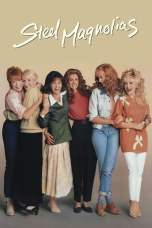 Steel Magnolias (1989) BluRay 480p, 720p & 1080p Movie Download