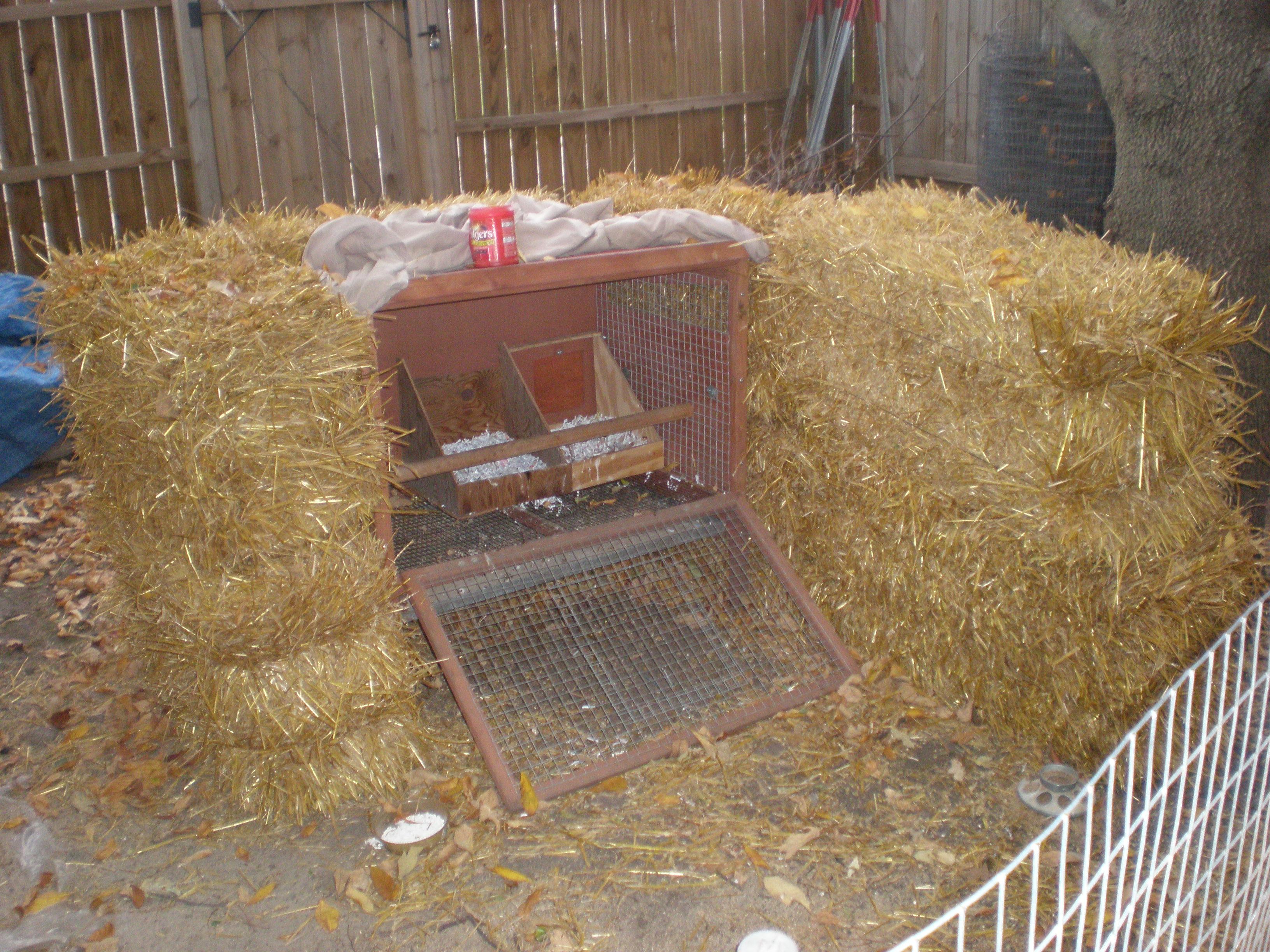 winterized coop