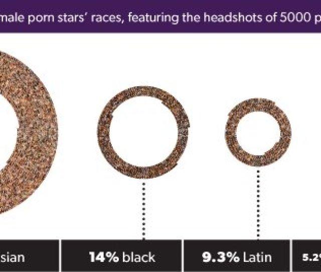 Porn Star Bra Size Weight Hair Color Averages Jon Millwards 1
