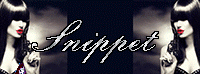Snippet Banner