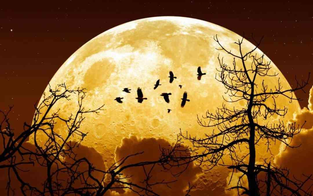 Нека бъде Супер Луна!