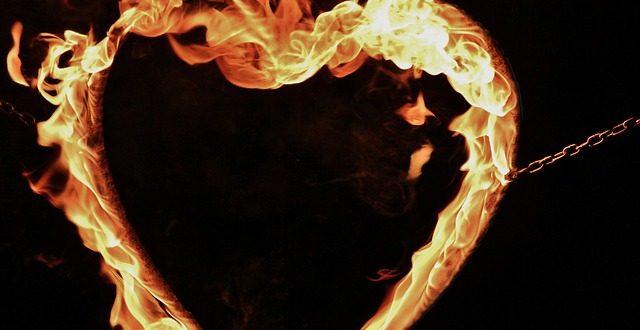 Очевидните скрити истини 2 : Корените на любовта