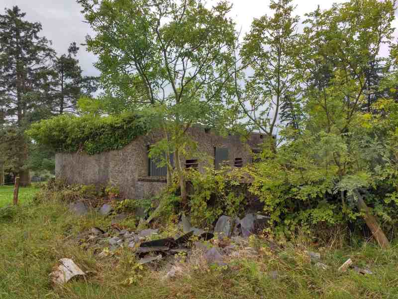 Irish Bothies, barns, byres and cottages a ruined byre