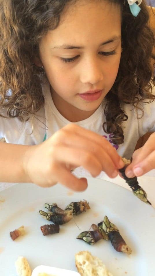 a pint sized gourmet loving an unusual foods - percebes in Portugal