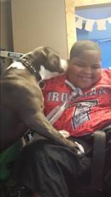 Xzavier Davis-Bilbo is reunited with his help dog Shi Shi after she was stolen from their yard.