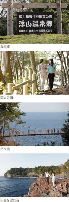 周辺の環境(温泉郷、吊り橋、国立公園、伊豆を望む海