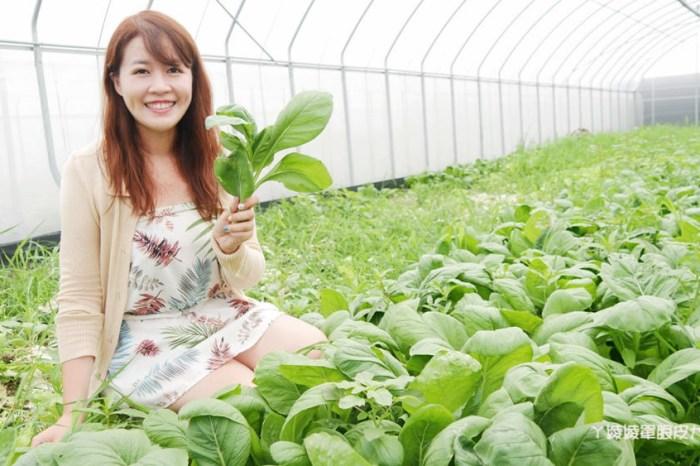 新竹旅遊景點!仁和有機農場與藍鯨魚寮,智慧農夫一日體驗!智慧農業服務的應用