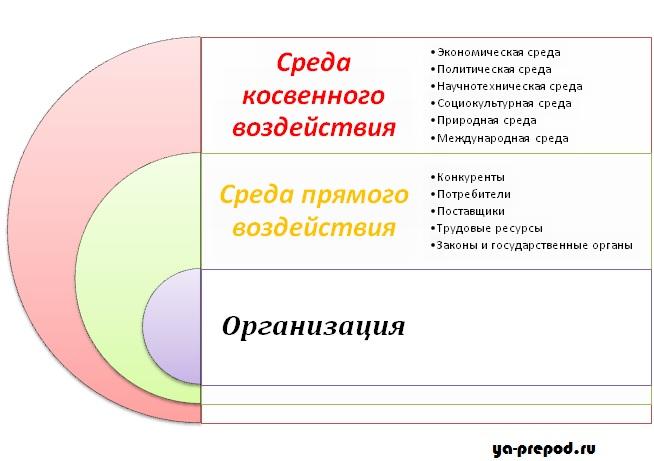 Структура внешней среды