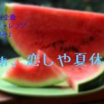 【3000文字チャレンジ】あぁ、恋しや夏休み。