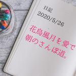【日記】2020/5/26 花鳥風月を愛でる朝のさんぽ道。