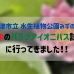 「草津市立 水生植物公園みずの森」でドキドキのパラグアイオニバス試乗会!!