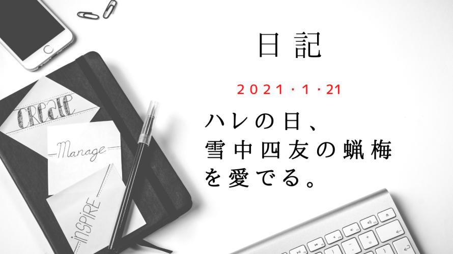【日記】2021/1/21 ハレの日、雪中四友の蝋梅を愛でる。