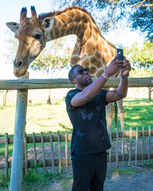 kevin hart south africa 4
