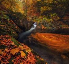 Bulqar fotoqraf Ivan Miladinovun 'Old River'adlı çalışması.