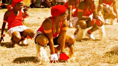INDLAMU Kwazulu Natal Best Zulu Dance (Must Watch)