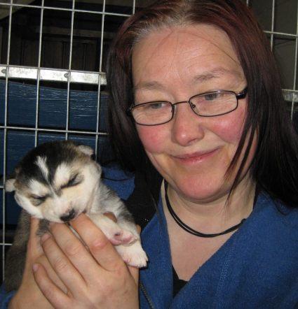 Rikke Bergendal på kennel Nay-La-Chee's ögonlyser och dokumenterar alla sina hundar.
