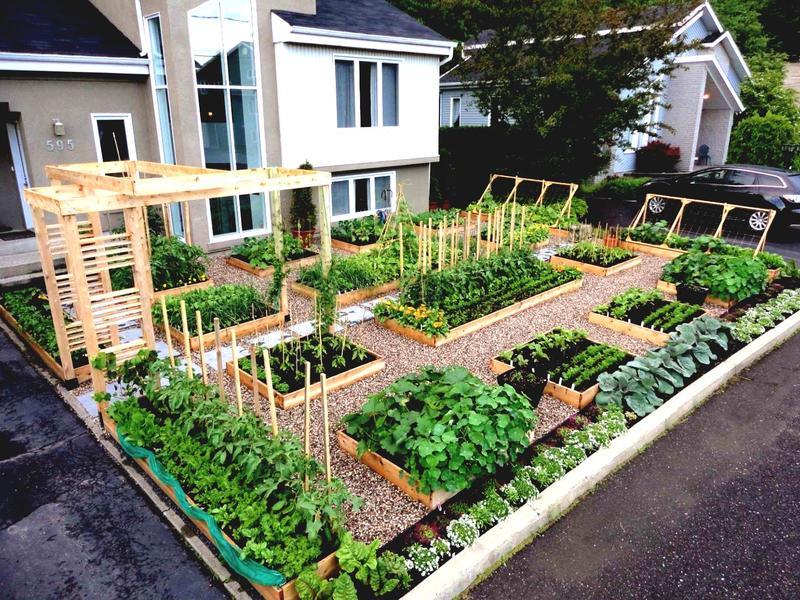 ландшафтный дизайн огорода 3