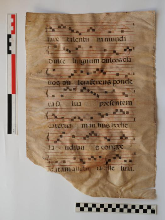 Page of medieval, ecclesiatical music with words in Latin
