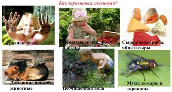 Кишечные паразиты у человека: симптомы, лечение, препараты