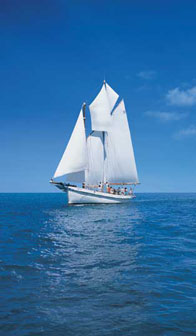 YACHT CHARTER IN ASIA SAILESCAPES SLOOP