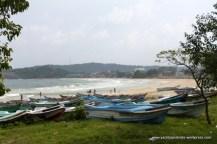 Surf beach on windward side of peninsula