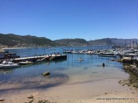 Marina at low tide