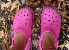 A pair of crocs!