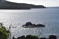Lameshur Bay