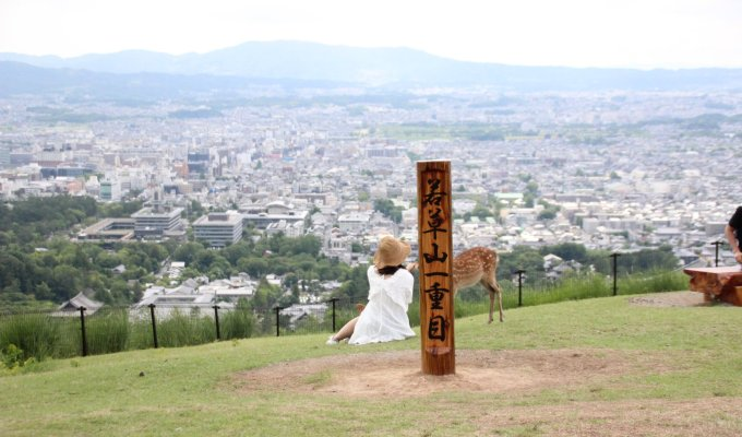 Deer and Big Buddha and Take a deep breath in Mt. Wakakusa