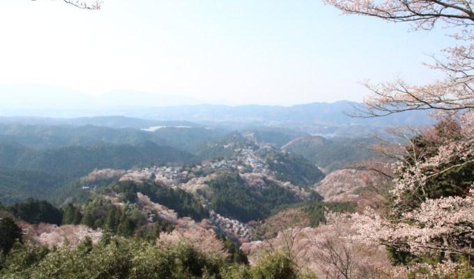 [3月下旬-4月上旬]奈良 吉野 千本桜