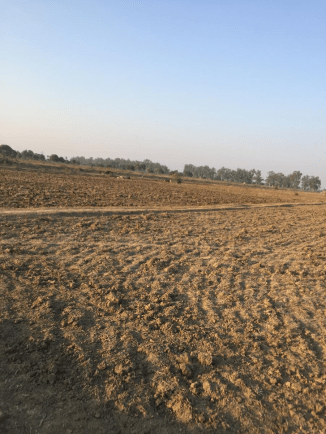 Village field