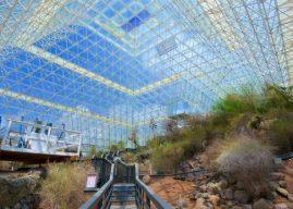«Биосфера-2»: рай не удался