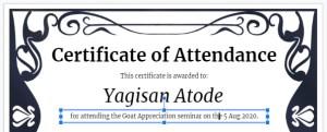 details text Google Sheets certificate of attendance