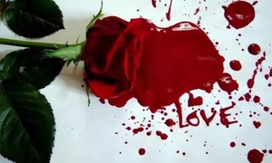 Růže a krev