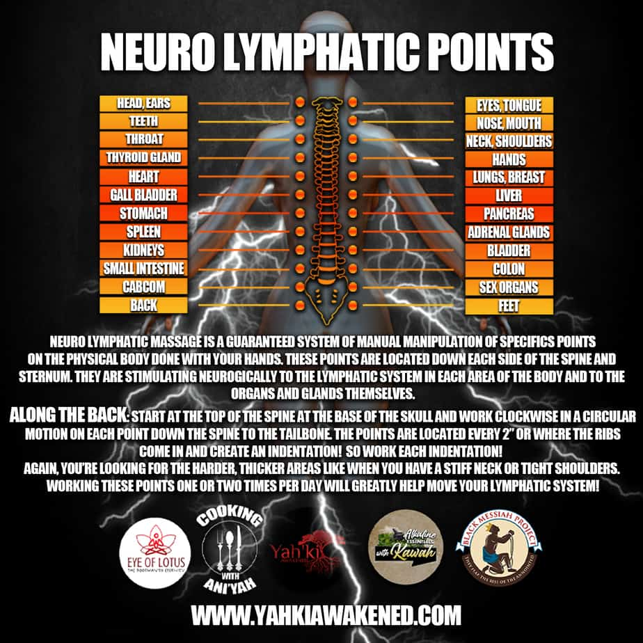 NUERO LYMPHATIC POINTS