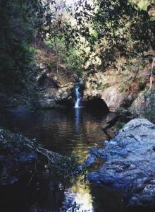 Photograph of Potoroo Falls waterfall and pool of water