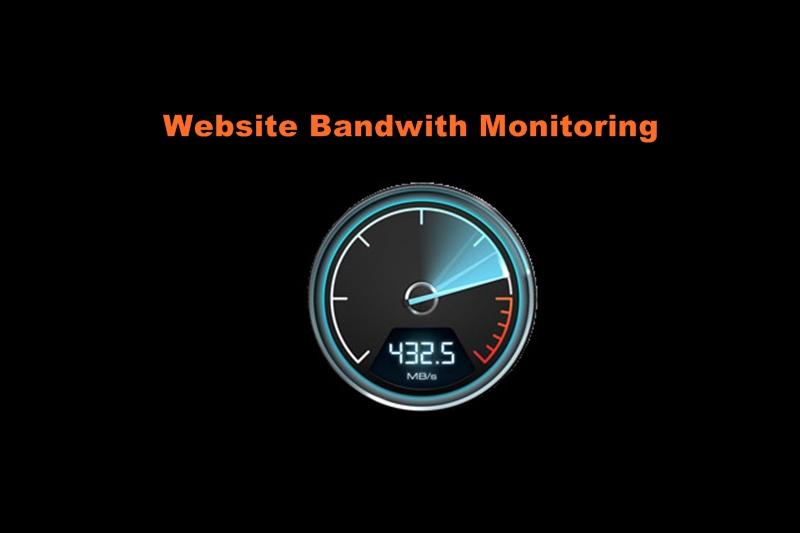 Website Bandwidth Usage cPanel