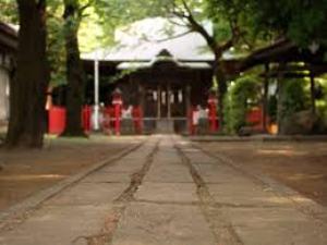 大宮氷川神社の初詣はおすすめです。 混雑するので状況を見てから行って下さい。