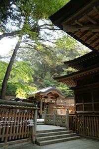 初詣に清澄寺旭が森が穴場のスポットです。混雑は少ないですよ。