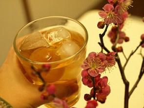 箕郷梅林みさと梅まつりは毎年多くの観光客でにぎわいます。